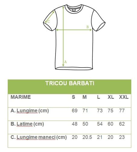design atemporal cel mai bun online cumpăra bine Tricou barbatesc motiv traditional brodat